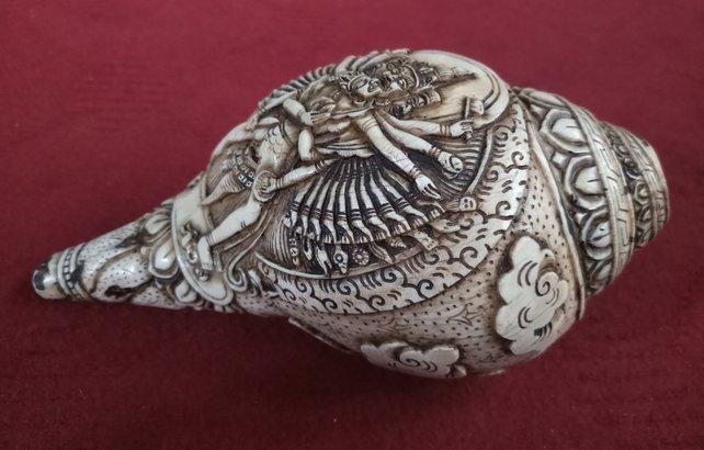 chakrasamvara conch shell shankha inside view